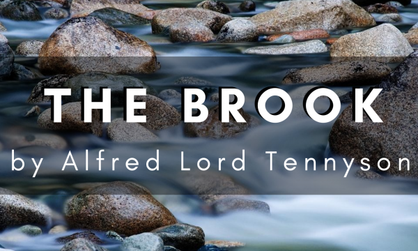 The Brook by Alfred Lord Tennyson